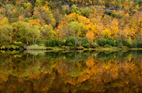Autumn Colors Reflected in the St. Croix River
